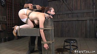 Sexy Body Bitch Tied And Dildo Fucked