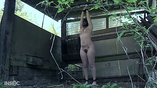 Plump ass and wet pussy of Sasha Heart are punished by one kinky dude